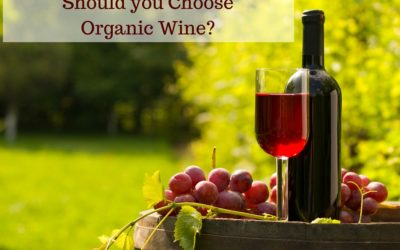 Should You Choose Organic Wine?